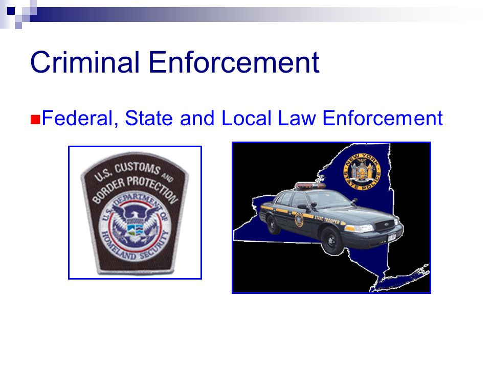 Criminal Enforcement Federal, State and Local Law Enforcement