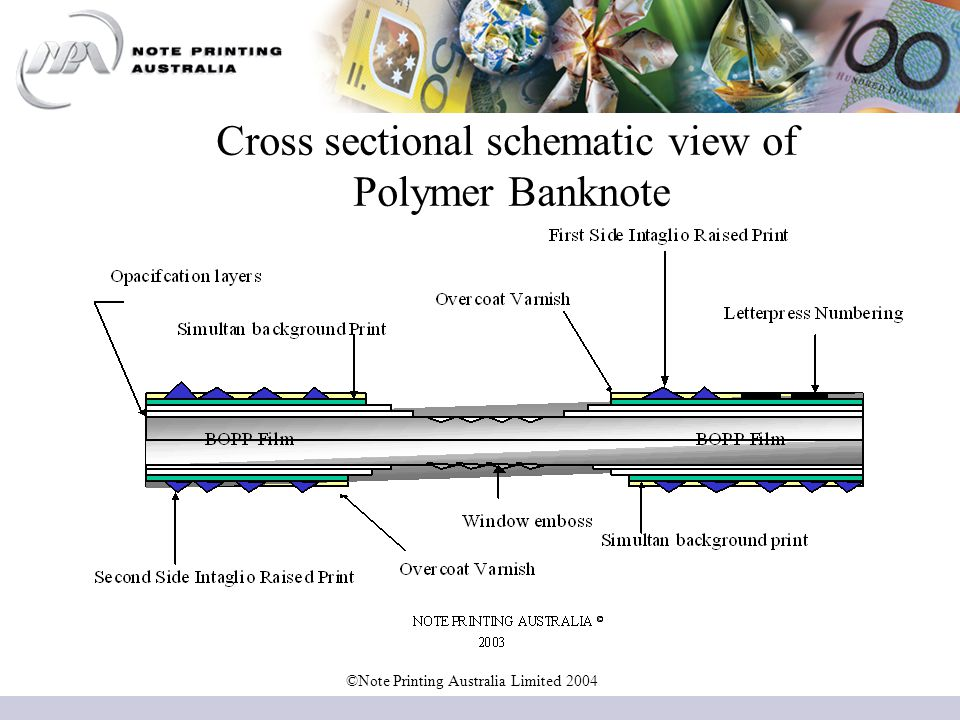 Cross sectional schematic view of Polymer Banknote ©Note Printing Australia Limited 2004