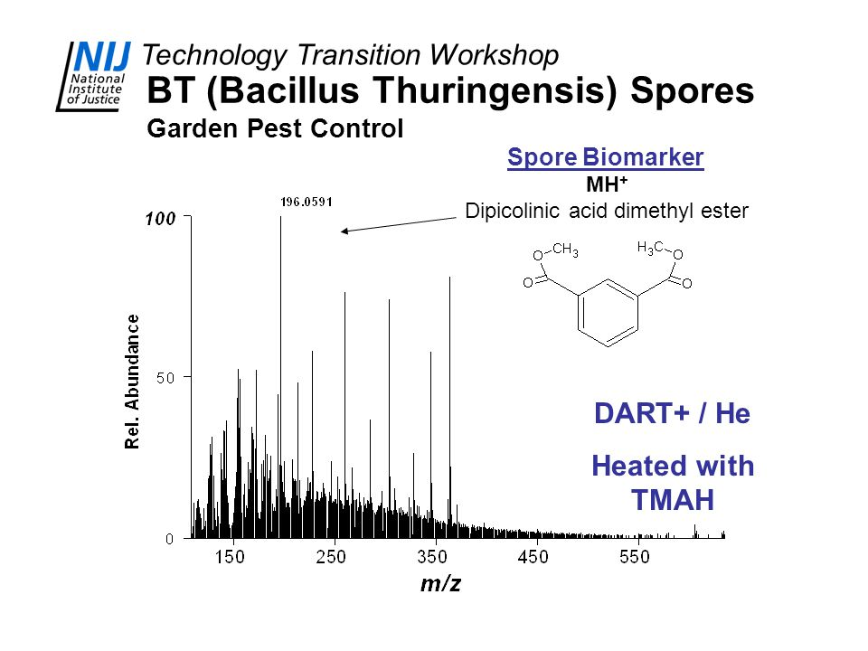 Technology Transition Workshop BT (Bacillus Thuringensis) Spores Garden Pest Control DART+ / He Heated with TMAH MH + Dipicolinic acid dimethyl ester