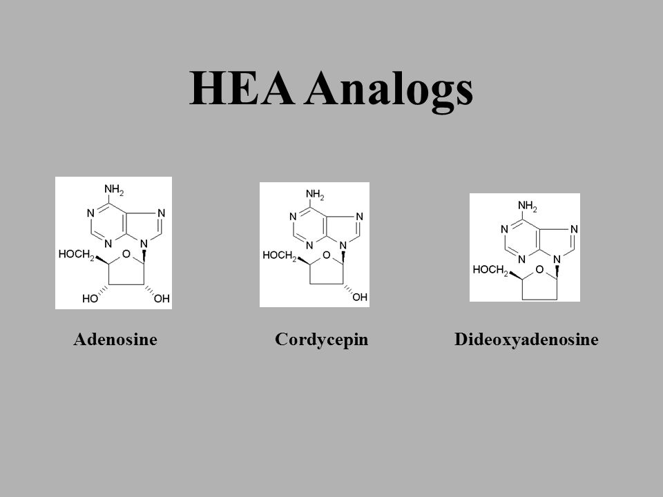 By using these HEAA compounds as the 'Quality Index' standard, a simple and repeatable analytical method by which all Cordyceps can be graded and compared has been established.