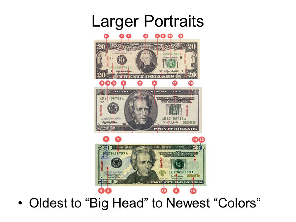 Larger Portraits Oldest to Big Head to Newest Colors