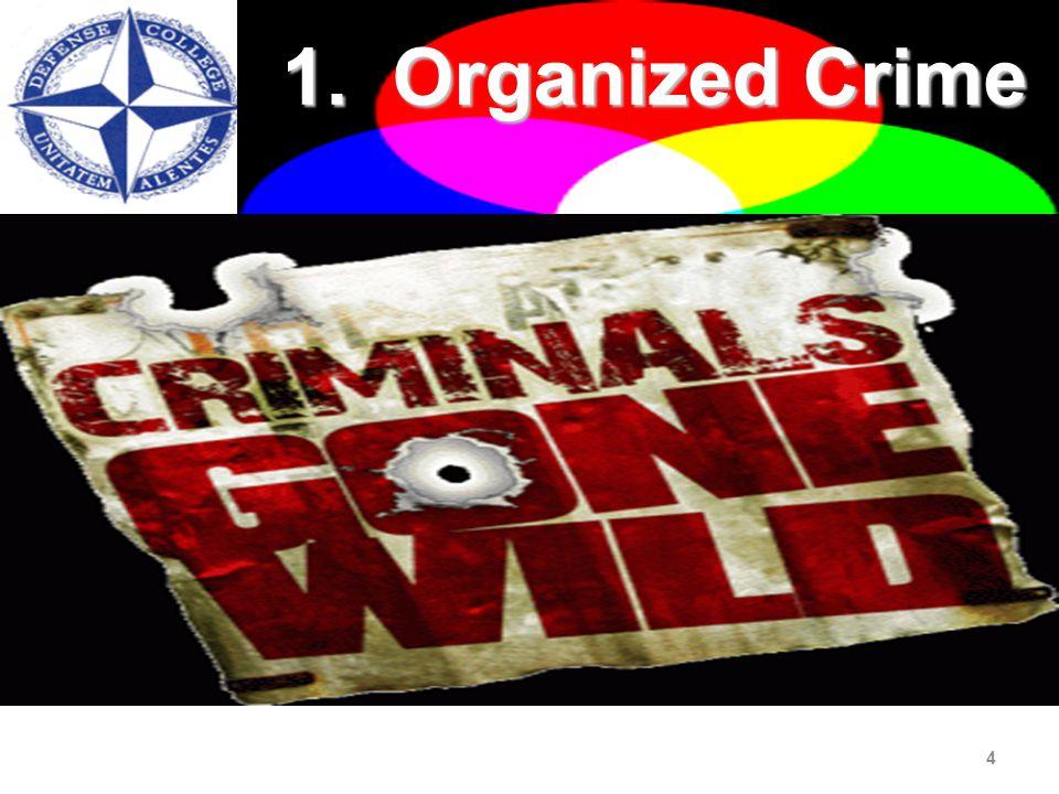 4 1. Organized Crime