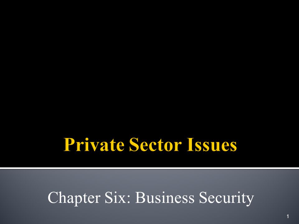 Chapter Six: Business Security 1