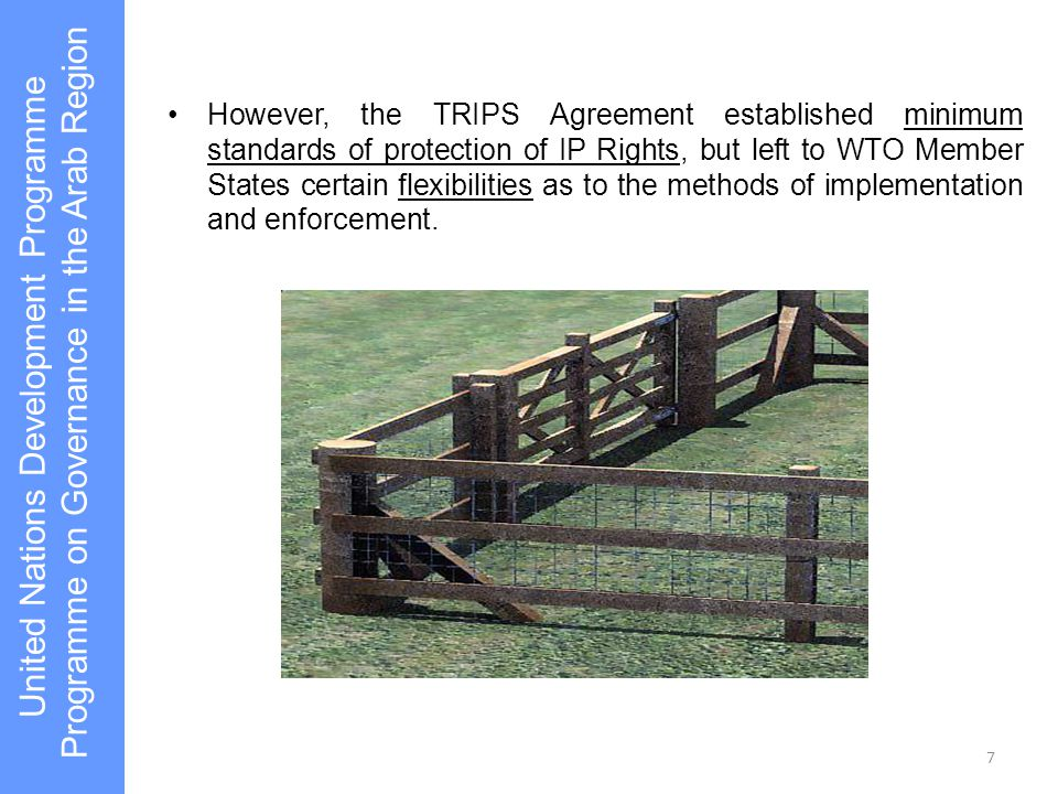 7 However, the TRIPS Agreement established minimum standards of protection of IP Rights, but left to WTO Member States certain flexibilities as to the