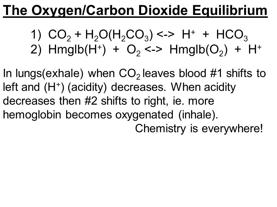 The Oxygen/Carbon Dioxide Equilibrium 1) CO 2 + H 2 O(H 2 CO 3 ) H + + HCO 3 2) Hmglb(H + ) + O 2 Hmglb(O 2 ) + H + In lungs(exhale) when CO 2 leaves blood #1 shifts to left and (H + ) (acidity) decreases.