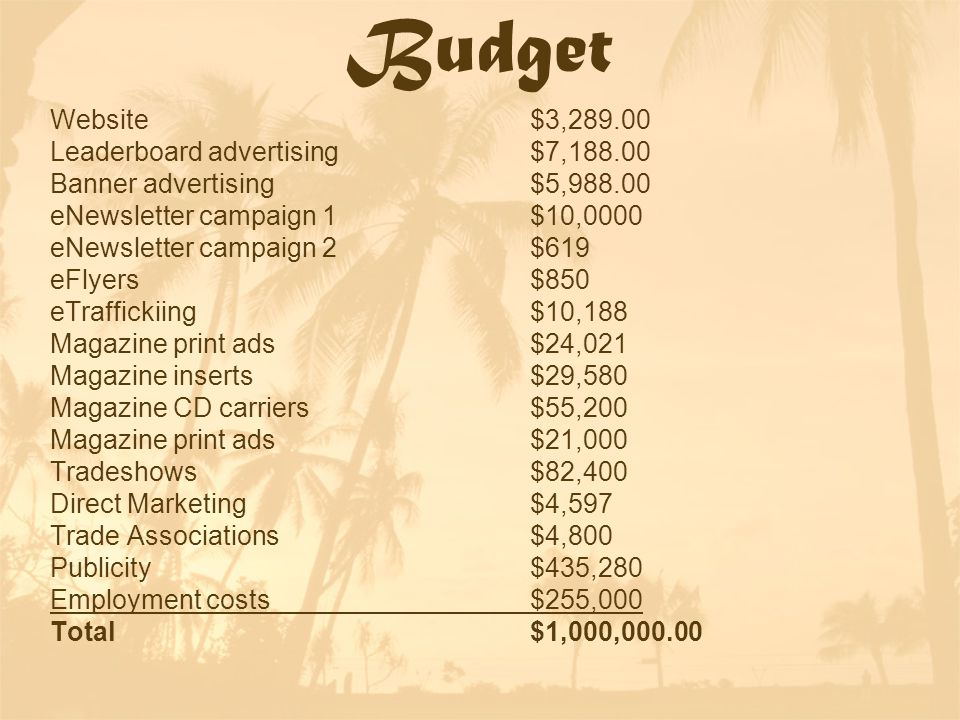 Budget Website$3,289.00 Leaderboard advertising$7,188.00 Banner advertising$5,988.00 eNewsletter campaign 1$10,0000 eNewsletter campaign 2$619 eFlyers$850 eTraffickiing$10,188 Magazine print ads$24,021 Magazine inserts$29,580 Magazine CD carriers$55,200 Magazine print ads$21,000 Tradeshows$82,400 Direct Marketing$4,597 Trade Associations$4,800 Publicity$435,280 Employment costs$255,000 Total$1,000,000.00