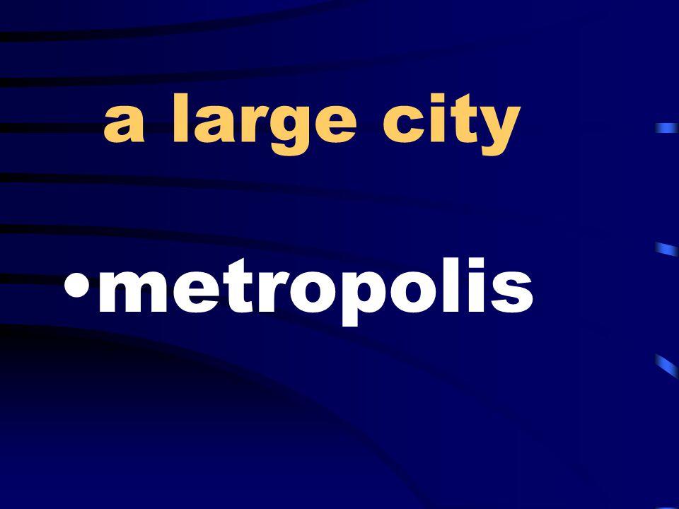 a large city metropolis