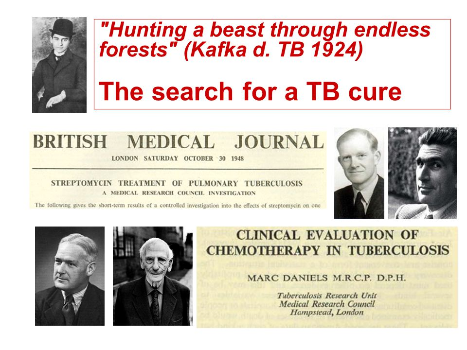 Hunting a beast through endless forests (Kafka d. TB 1924) The search for a TB cure