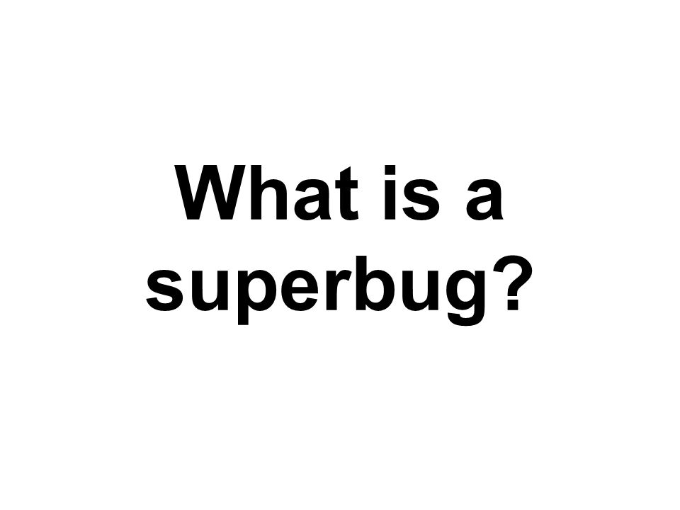 What is a superbug