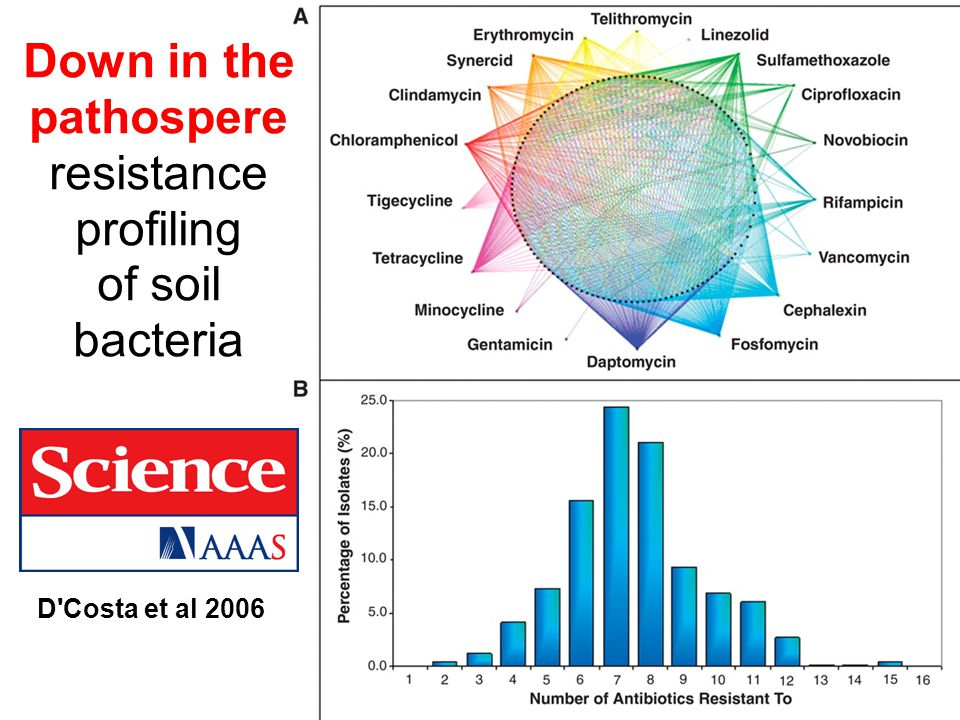 Down in the pathospere resistance profiling of soil bacteria D Costa et al 2006