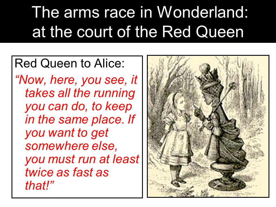 The arms race in Wonderland: at the court of the Red Queen Red Queen to Alice: Now, here, you see, it takes all the running you can do, to keep in the same place.
