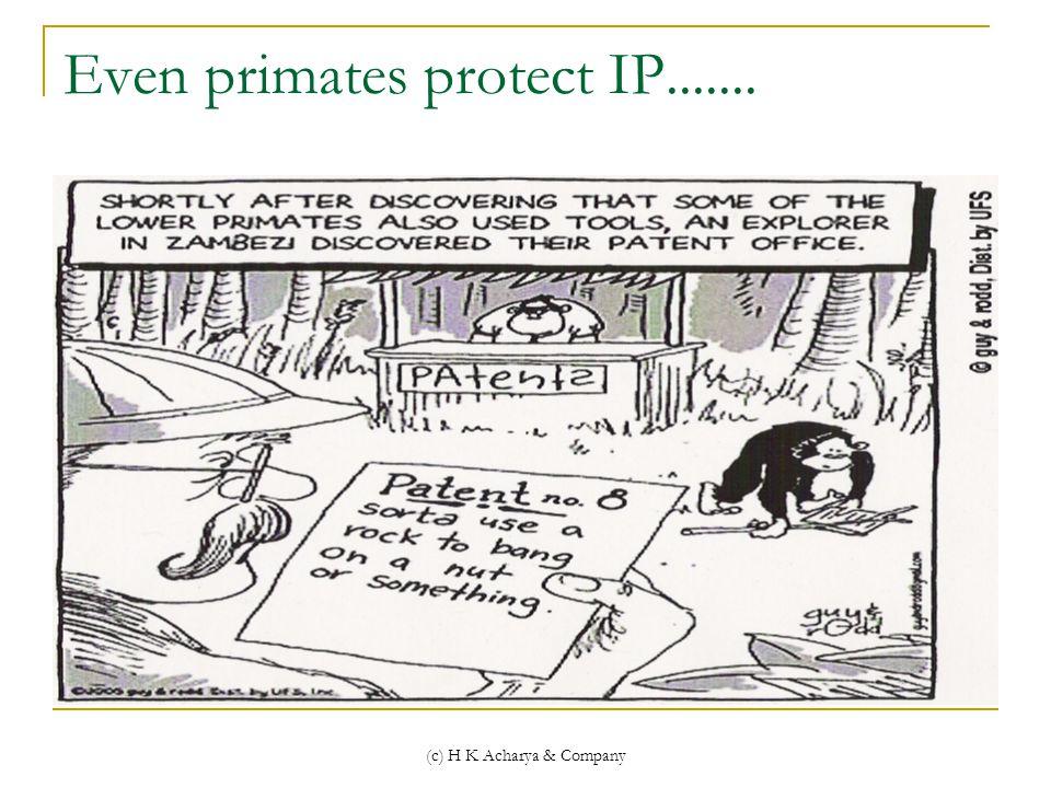 (c) H K Acharya & Company Even primates protect IP.......