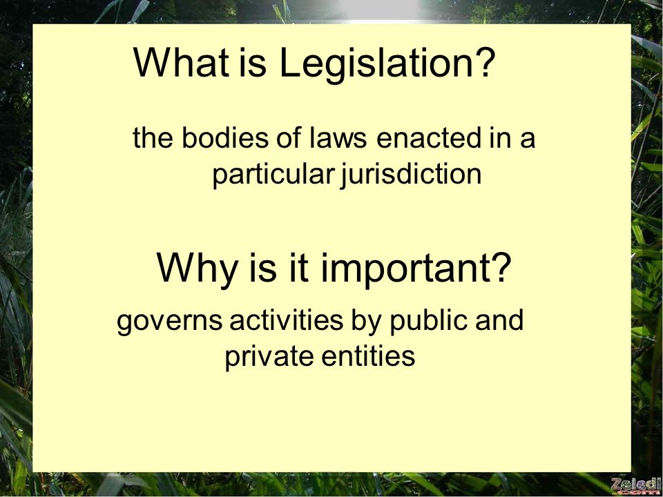 What is Legislation. the bodies of laws enacted in a particular jurisdiction Why is it important.