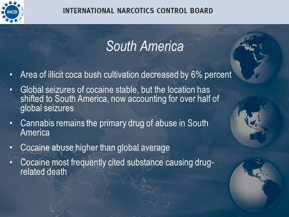 South America Area of illicit coca bush cultivation decreased by 6% percent Global seizures of cocaine stable, but the location has shifted to South America, now accounting for over half of global seizures Cannabis remains the primary drug of abuse in South America Cocaine abuse higher than global average Cocaine most frequently cited substance causing drug- related death