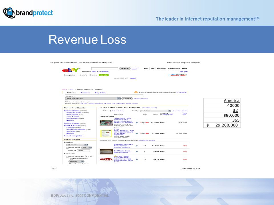 The leader in internet reputation management TM BDProtect Inc. 2009 CONFIDENTIAL Revenue Loss