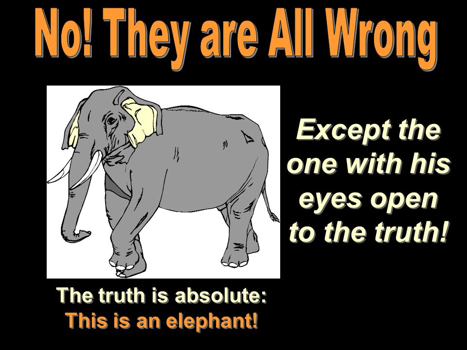 Except the one with his eyes open to the truth! The truth is absolute: This is an elephant!