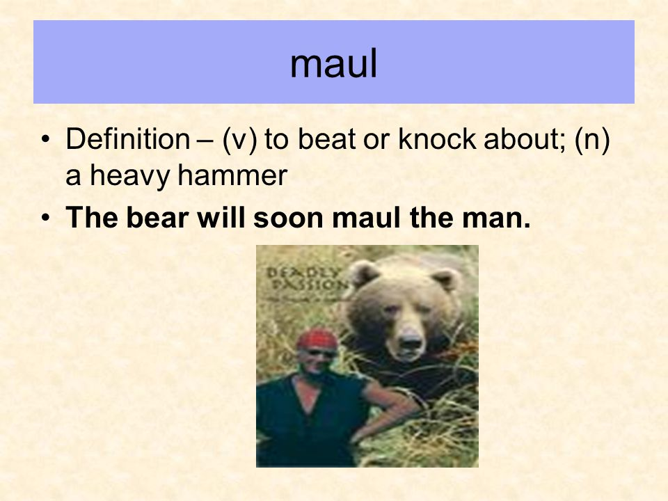 maul Definition – (v) to beat or knock about; (n) a heavy hammer The bear will soon maul the man.
