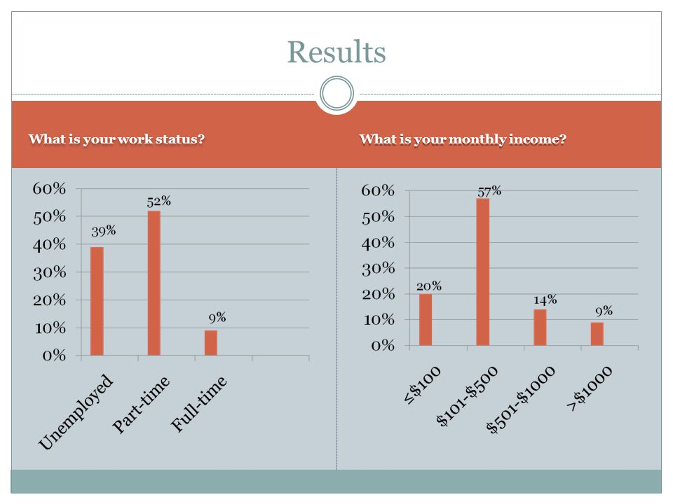 What is your work status? What is your monthly income? Results