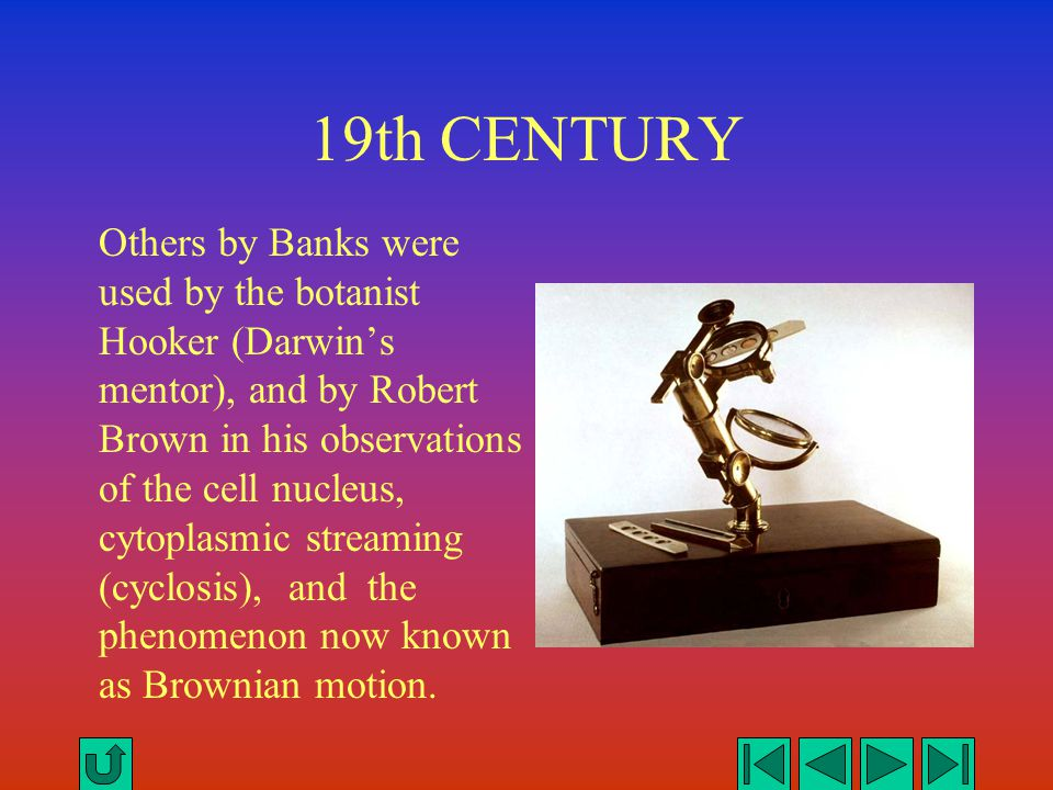 19th CENTURY Others by Banks were used by the botanist Hooker (Darwin's mentor), and by Robert Brown in his observations of the cell nucleus, cytoplas
