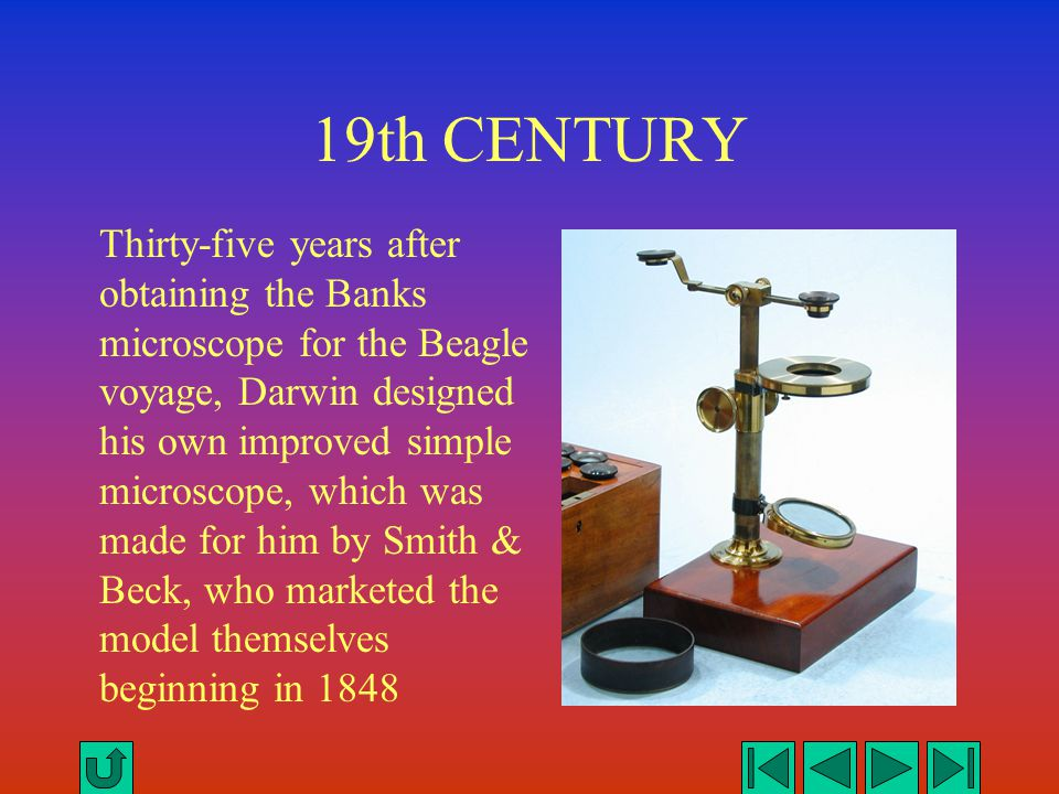 19th CENTURY Thirty-five years after obtaining the Banks microscope for the Beagle voyage, Darwin designed his own improved simple microscope, which w