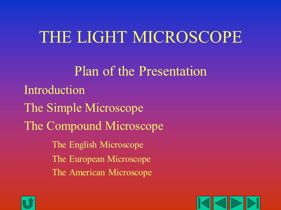 SEEING IS BELIEVING The light microscope opened the mind to the world of the hitherto unseen.
