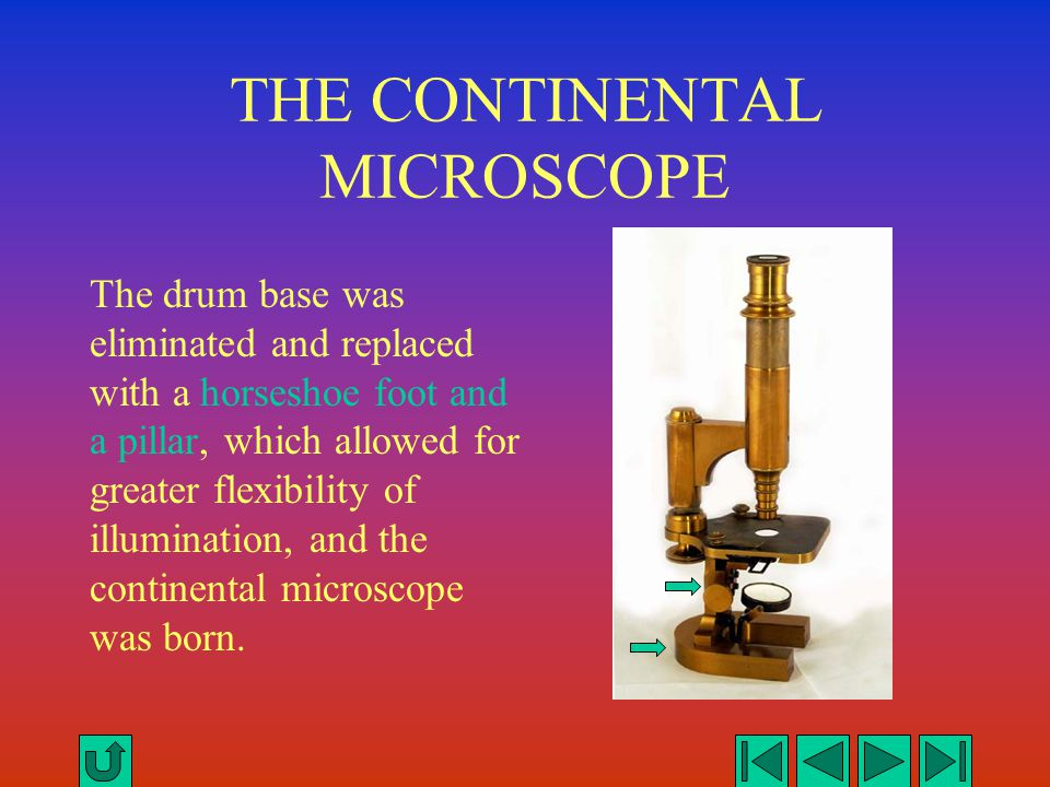 THE CONTINENTAL MICROSCOPE The drum base was eliminated and replaced with a horseshoe foot and a pillar, which allowed for greater flexibility of illu