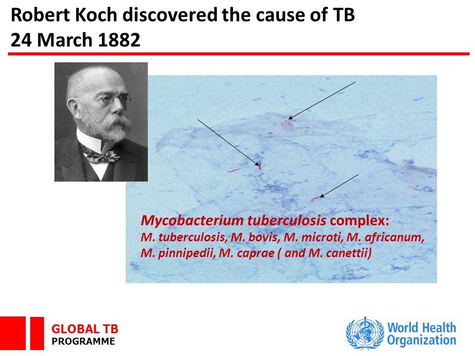 GLOBAL TB PROGRAMME ROADBLOCK 1: Lack of commitment … …