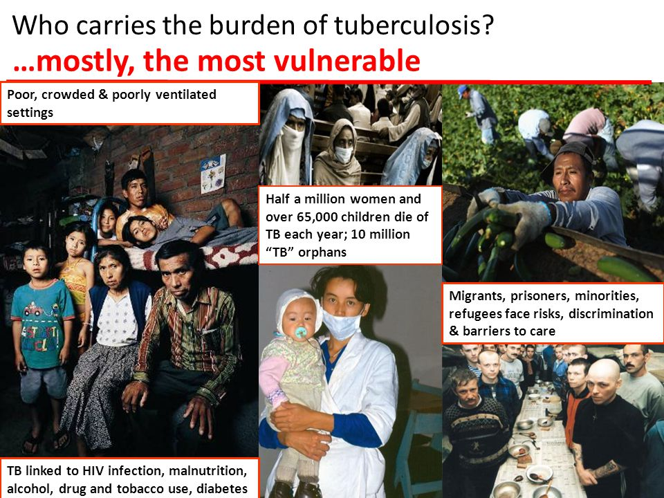 GLOBAL TB PROGRAMME Incidence Mortality Global Progress 51 million patients cured, 1995-2011 20 million lives saved since 1995 2015 MDG and other international targets on track BUT, TB incidence declining far too slowly, 1/3 of cases not in the system, MDR-TB un-tackled etc.