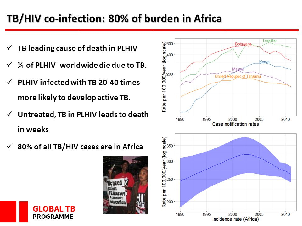 GLOBAL TB PROGRAMME TB/HIV co-infection: 80% of burden in Africa TB leading cause of death in PLHIV ¼ of PLHIV worldwide die due to TB.