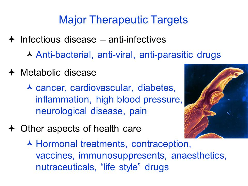 Major Therapeutic Targets  Infectious disease – anti-infectives Anti-bacterial, anti-viral, anti-parasitic drugs  Metabolic disease cancer, cardiova