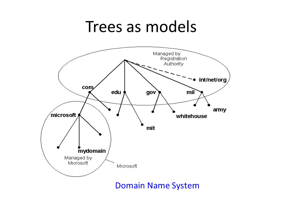 Trees as models Domain Name System