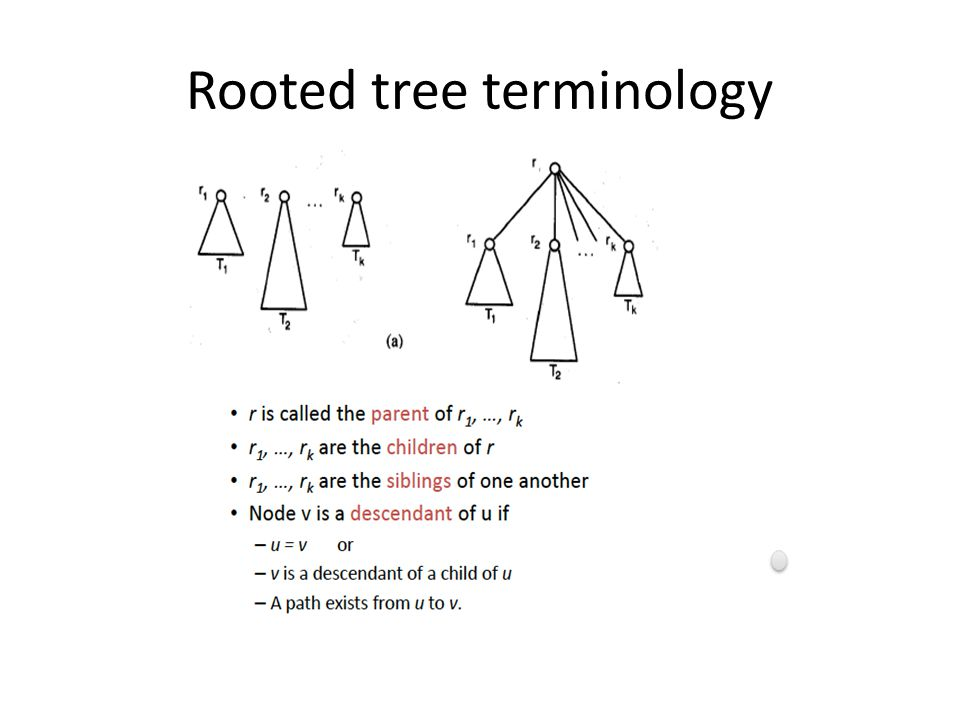 Properties of trees Theorem.Every tree is a bipartite graph.