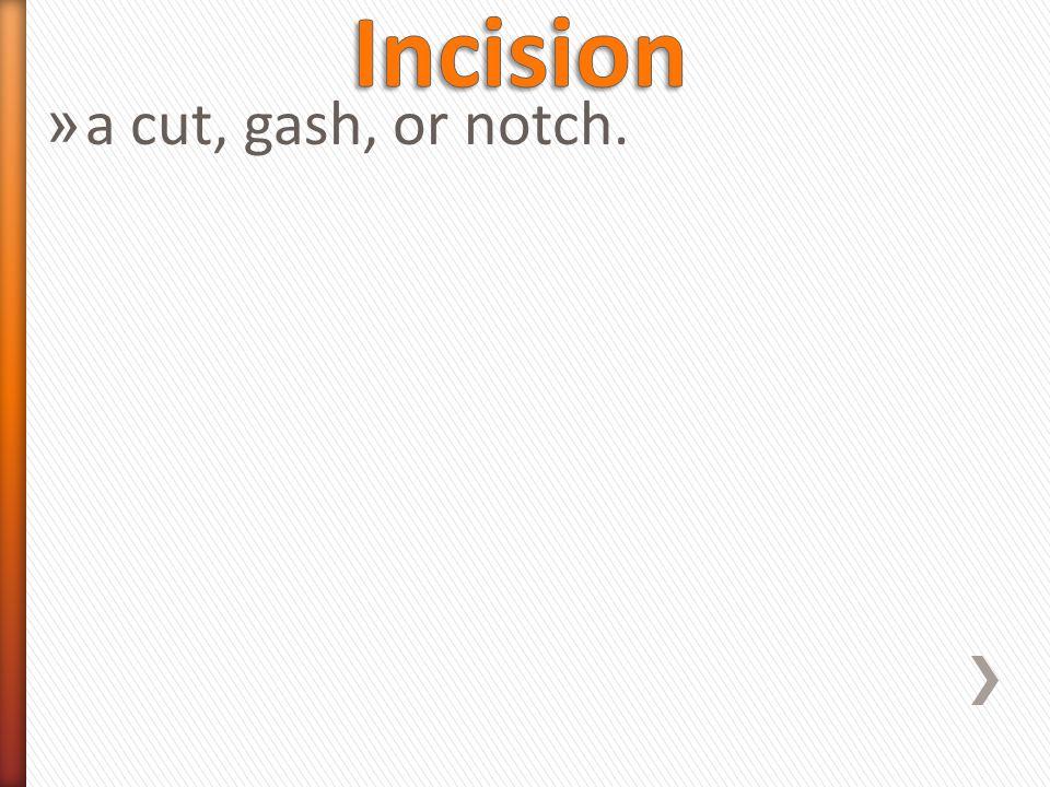» a cut, gash, or notch.