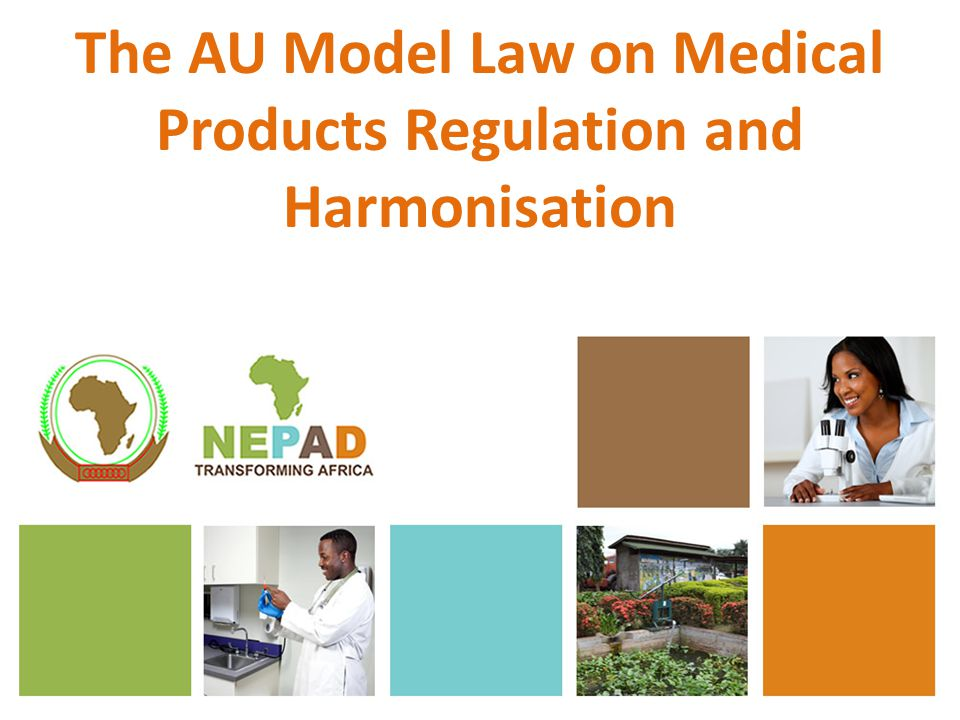 Parts of the Model Law (2) Part VI: Offences and Legal Proceeding Part VII: Administrative Appeals Procedures Part VIII: Harmonization of Regulation of Medical Products and International Cooperation Part IX: Monitoring and Evaluation Part X: Regulations Part XI: Statutory and Transitional Arrangements
