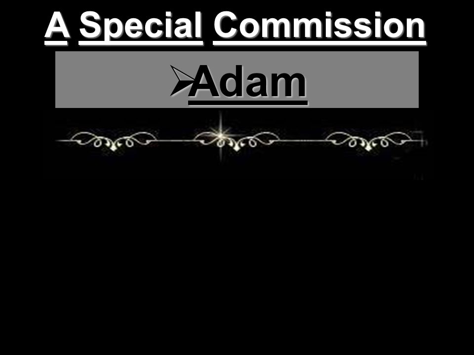 A Special Commission  Adam