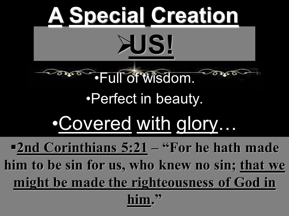 Full of wisdom. Perfect in beauty. Covered with glory… A Special Creation  US.