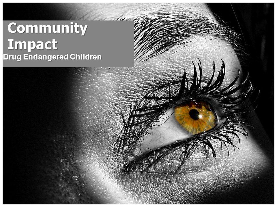 Community Impact Drug Endangered Children