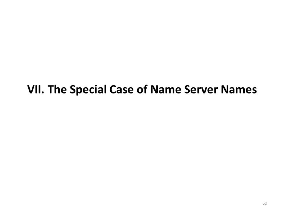 VII. The Special Case of Name Server Names 60