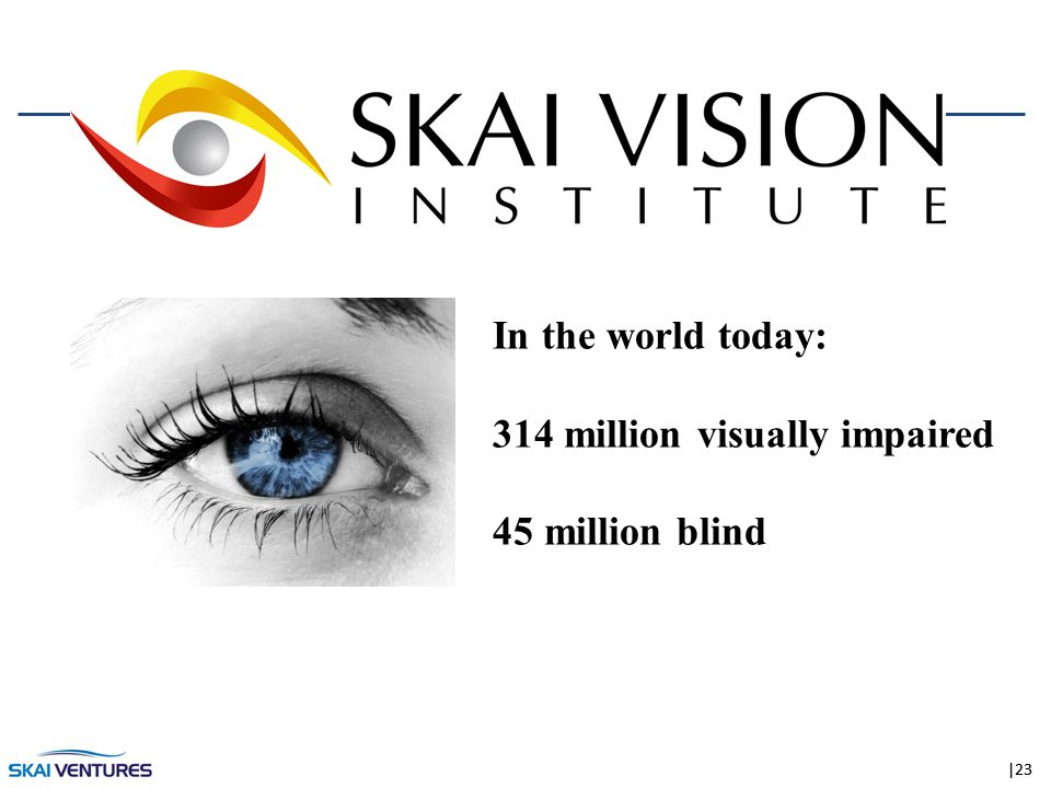 |23 In the world today: 314 million visually impaired 45 million blind