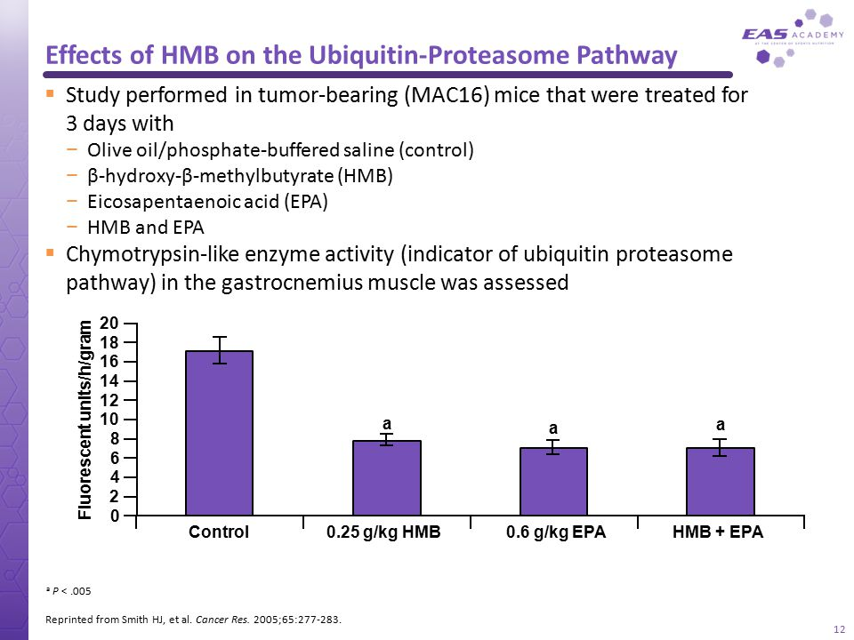 Effects of HMB on the Ubiquitin-Proteasome Pathway Reprinted from Smith HJ, et al. Cancer Res. 2005;65:277-283. a P <.005  Study performed in tumor-b