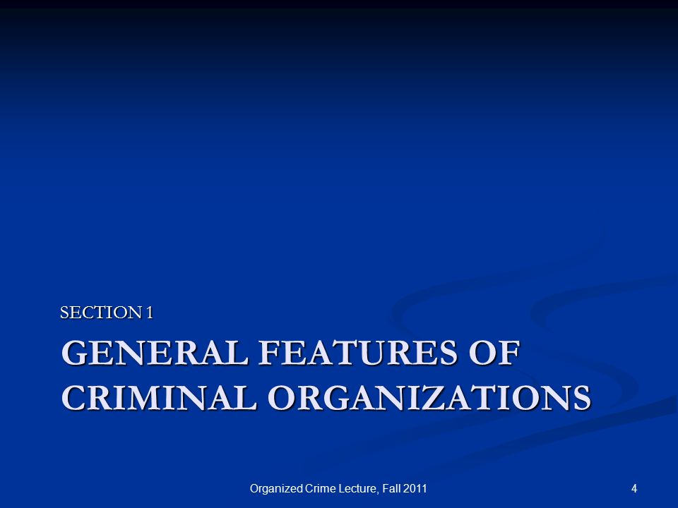 GENERAL FEATURES OF CRIMINAL ORGANIZATIONS SECTION 1 4Organized Crime Lecture, Fall 2011