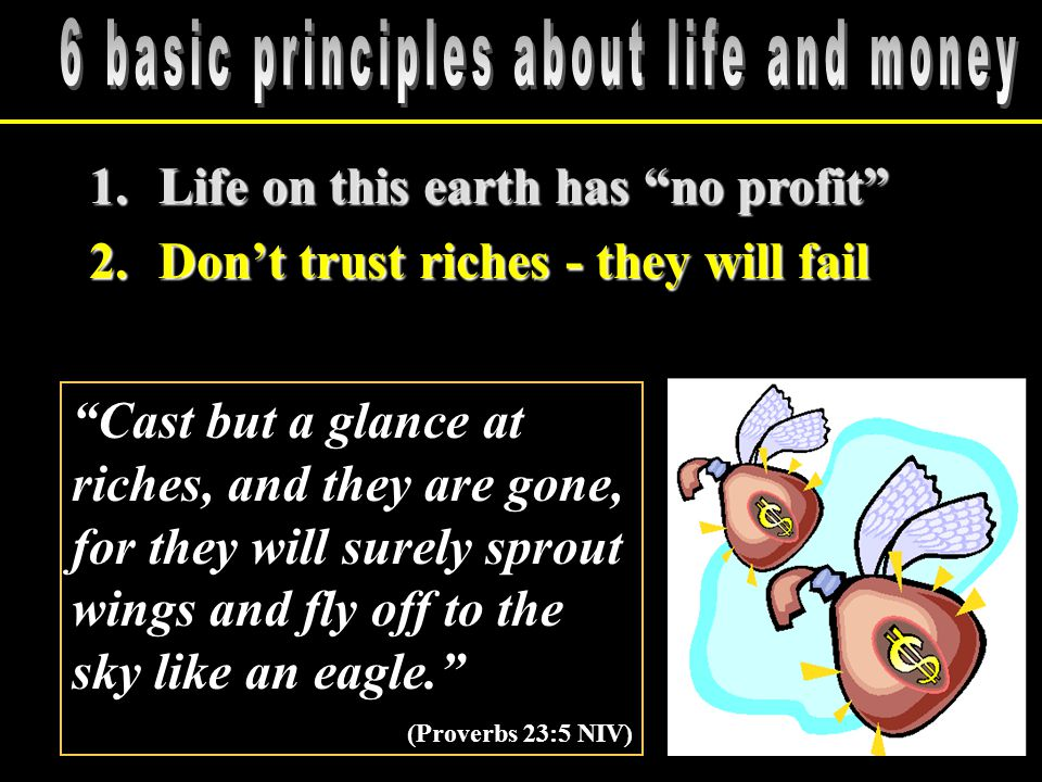 1.Life on this earth has no profit 2.Don't trust riches - they will fail Cast but a glance at riches, and they are gone, for they will surely sprout wings and fly off to the sky like an eagle. (Proverbs 23:5 NIV)