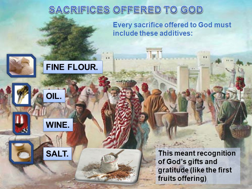 Every sacrifice offered to God must include these additives: FINE FLOUR.
