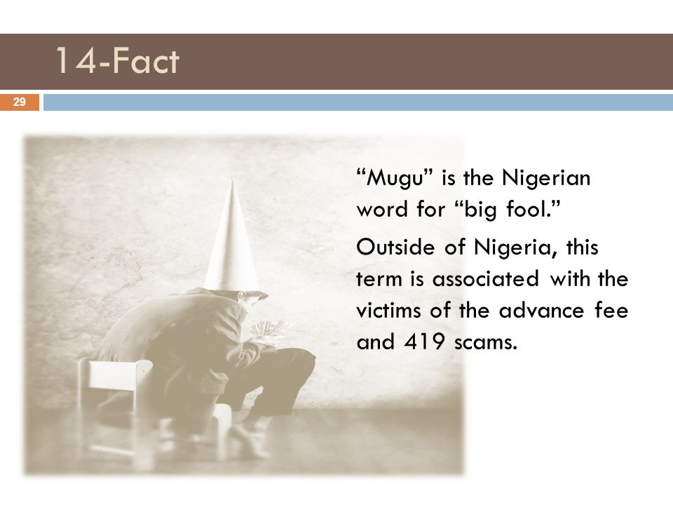 14-Fact Mugu is the Nigerian word for big fool. Outside of Nigeria, this term is associated with the victims of the advance fee and 419 scams.