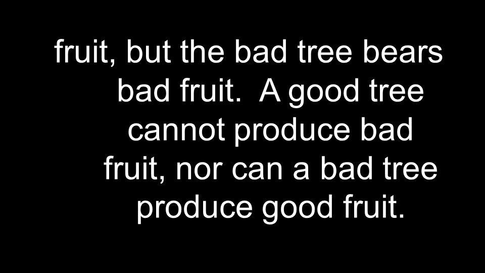 fruit, but the bad tree bears bad fruit.