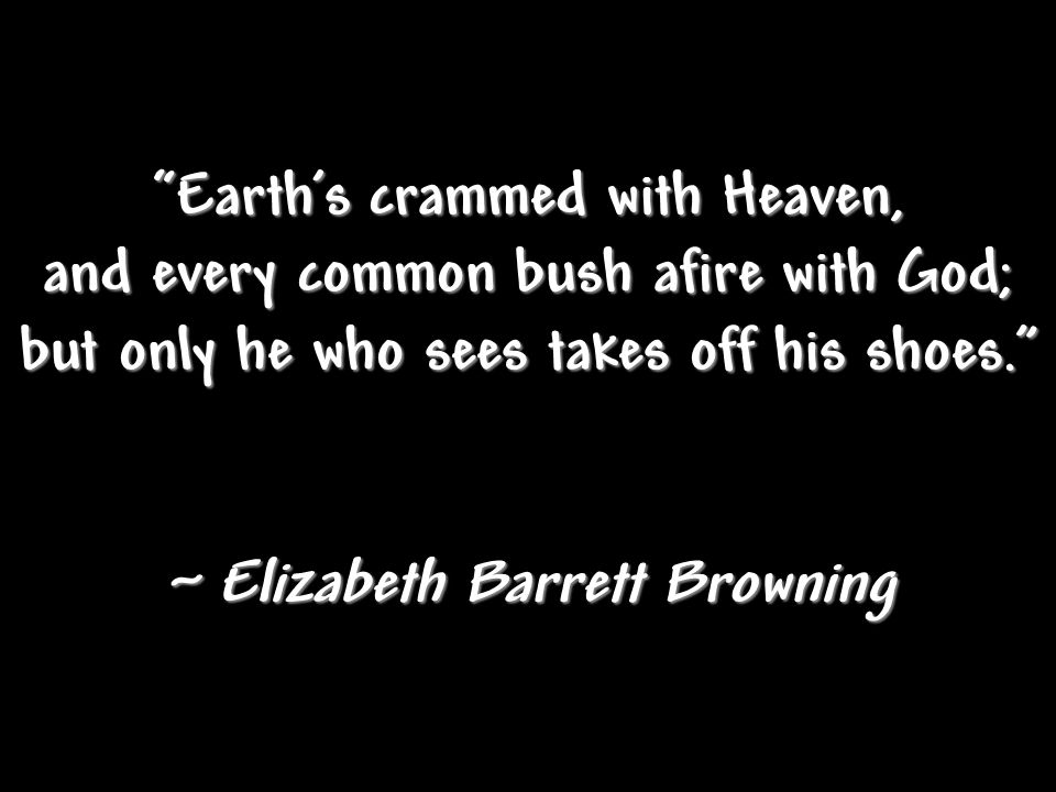 Earth's crammed with Heaven, and every common bush afire with God; but only he who sees takes off his shoes. ~ Elizabeth Barrett Browning