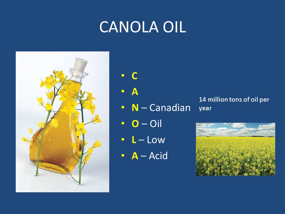 CANOLA OIL C A N – Canadian O – Oil L – Low A – Acid 14 million tons of oil per year