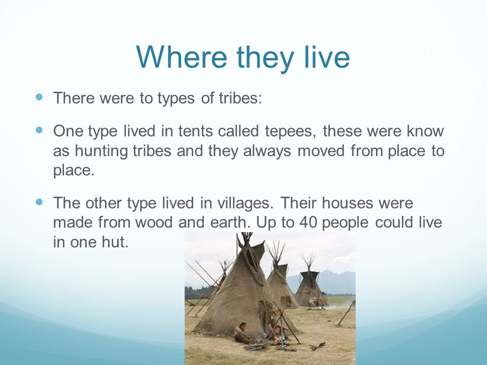 Where they live There were to types of tribes: One type lived in tents called tepees, these were know as hunting tribes and they always moved from place to place.