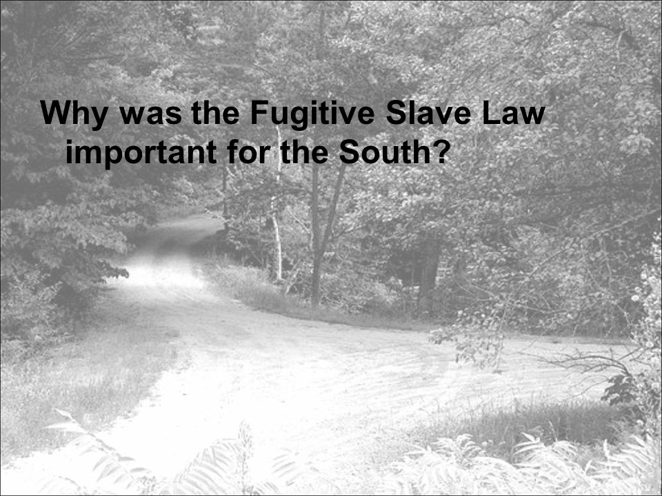 Why was the Fugitive Slave Law important for the South?
