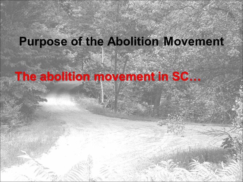 Purpose of the Abolition Movement The abolition movement in SC…